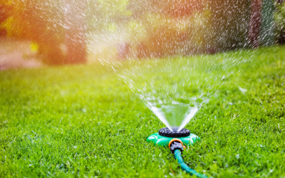 3 Tips for Watering Your Lawn This Summer